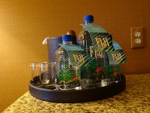 FIJI-Wasser auf unserem Hotelzimmer