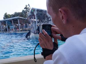 Die Orcas haben hier auch nach der Show richtig Spaß und fühlen sich wohl. Ohne Aufforderung springen sie aus dem Wasser oder spritzen die Zuschauer nass.